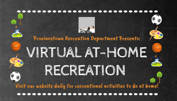 Virtual Recreation Website Header